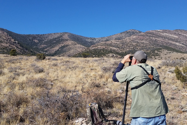 The key to finding elk is to let your optics do as much of the work as possible. Bargain basement optics are not the way go. Get the best glass you can afford. (Doug Nielsen/Special to Review-Journal)