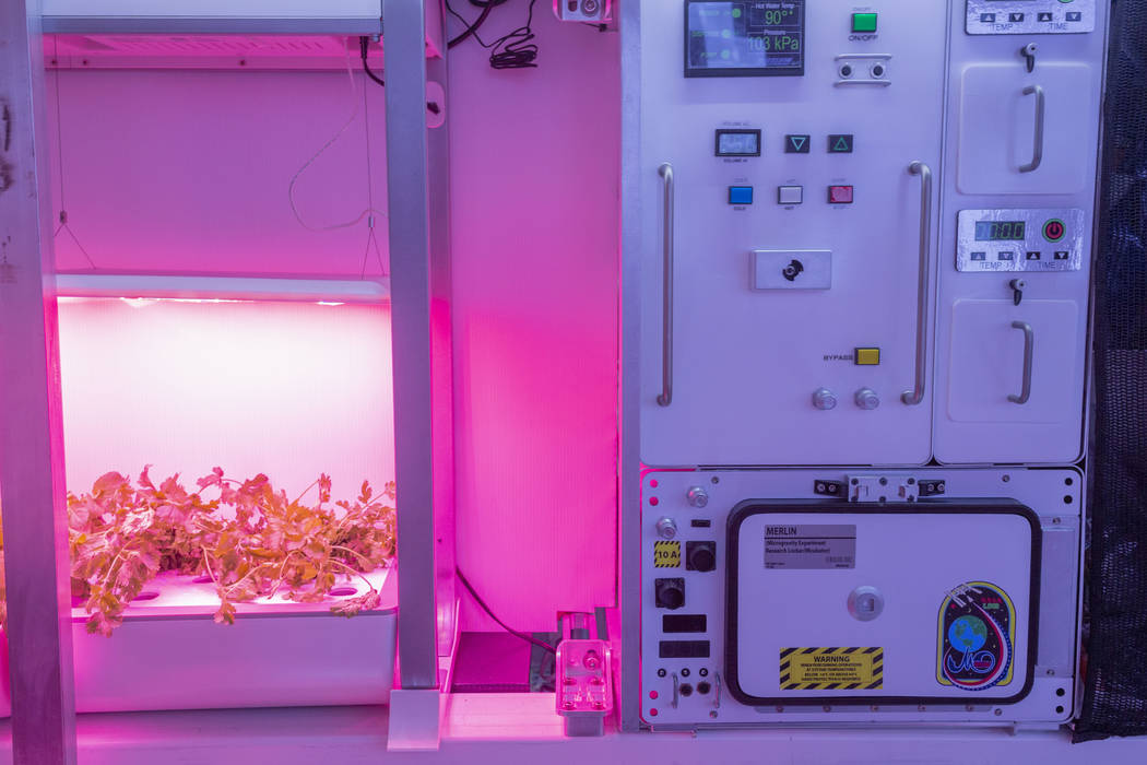 A fresh vegetable garden on the B330 Mars Transporter Testing Unit at Bigelow Aerospace in Nort ...
