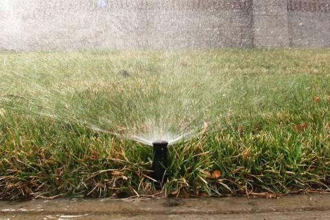 The winter watering schedule begins on Friday. (Bizuayehu Tesfaye Las Vegas Review-Journal) @bi ...