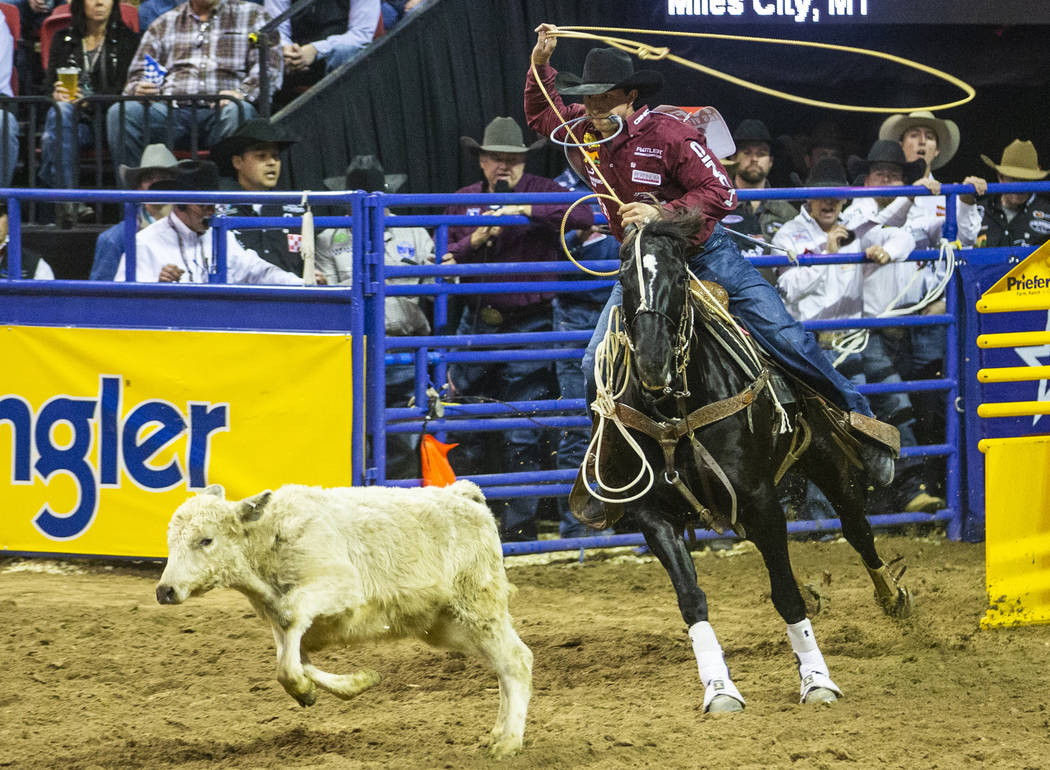 Haven Meged of Miles City, Mont., eyes a steer in Tie-Down Roping at the tenth go round of the ...