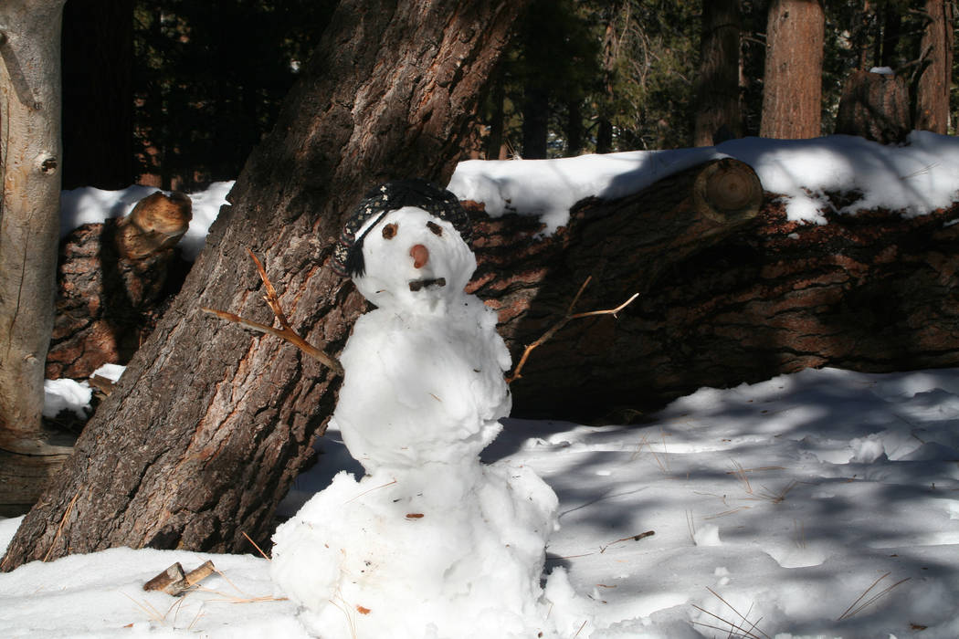 Visitors took advantage of the snow in San Jacinto State Park and built a funny snowman. (Debor ...