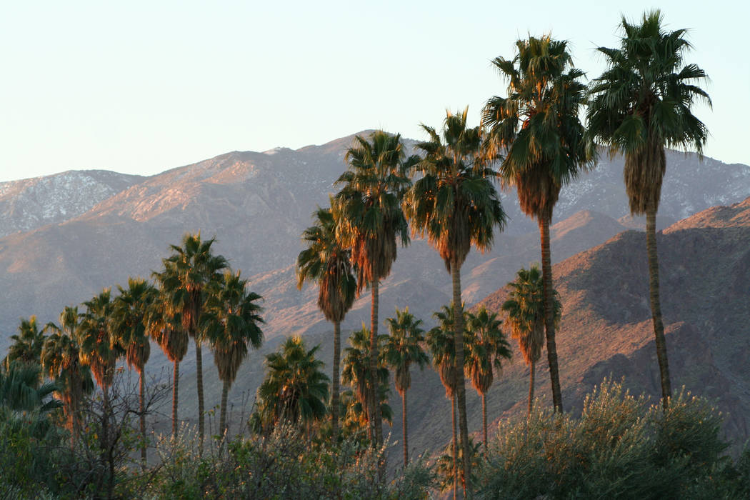 Sunrise in Palm Springs, Calif., a favorite winter getaway destination for Southern Nevadans. ( ...