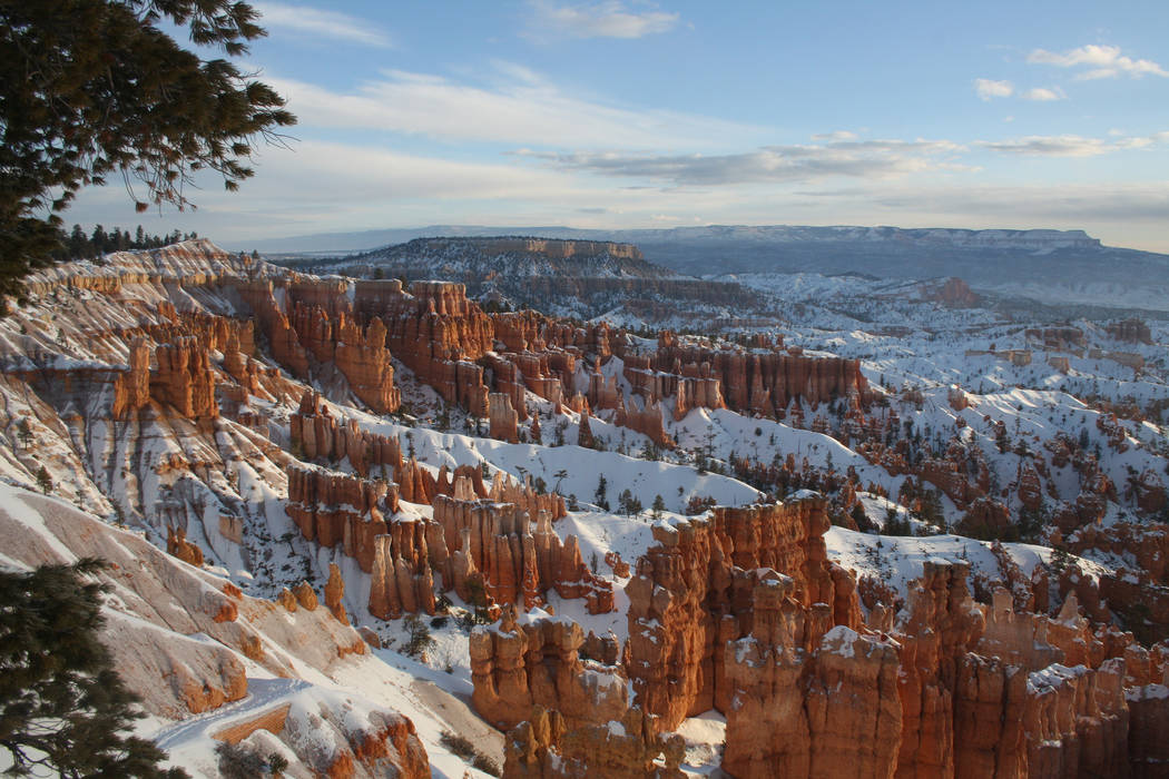 Though it's called a canyon, Bryce actually is made up of 12 natural amphitheaters. (Deborah Wa ...