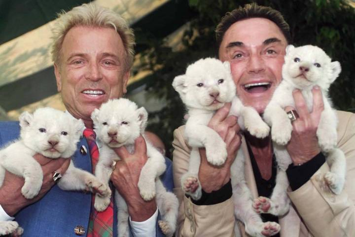 Las Vegas entertainers Siegfried & Roy, Siegfried Fischbacher, left, and Roy Uwe Ludwig Horn, r ...