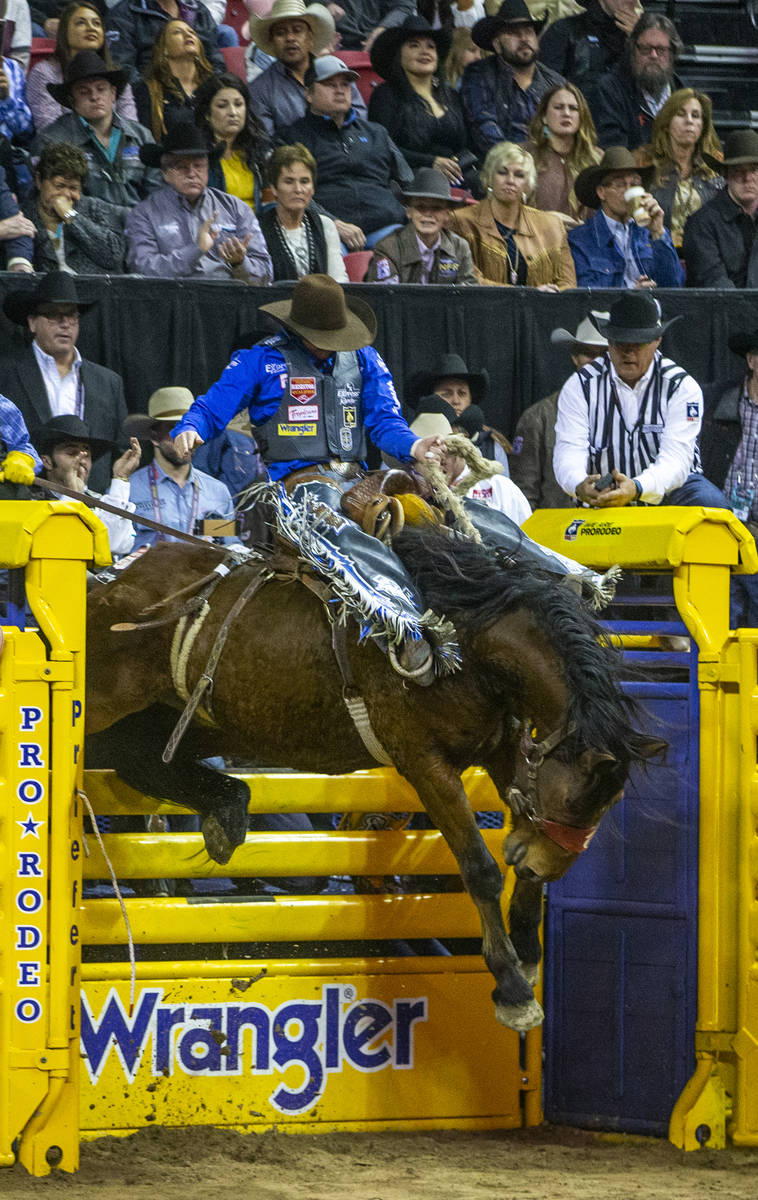 Spencer Wright of Milford, Utah, goes upward in the chute in Saddle Bronc Riding at the tenth g ...