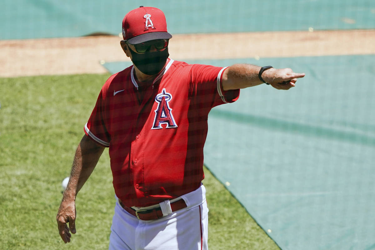 Los Angeles Angels manager Joe Maddon, center, points to the stands during baseball practice at ...