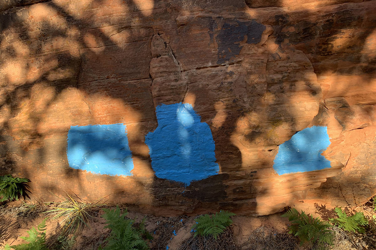 Six blue squares were painted on sandstone at Zion. (Zion National Park)