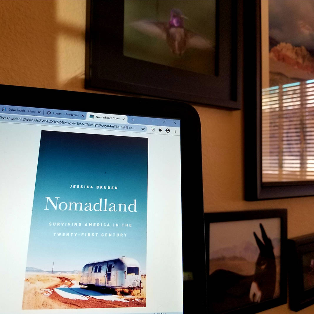 "Electronic copies of books, including ""Nomadland: Surviving America in the Twenty-First Centu ..."