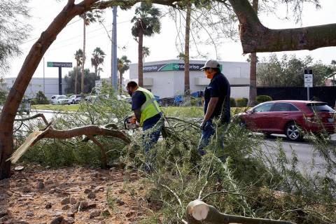 Las Vegas city workers remove tree branches broken by strong wind on Sahara Avenue, near Jones ...