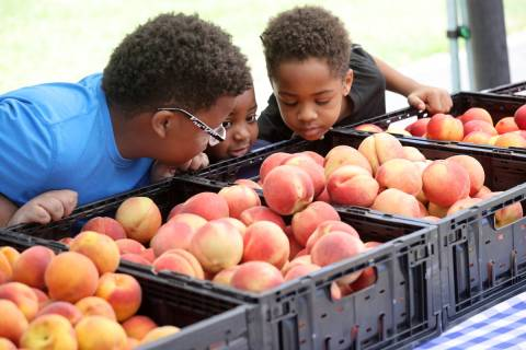 Cousins, from left, Ean Good, 10, Liam Carothers, 4, and Ethan Good, 8, check out the produce a ...
