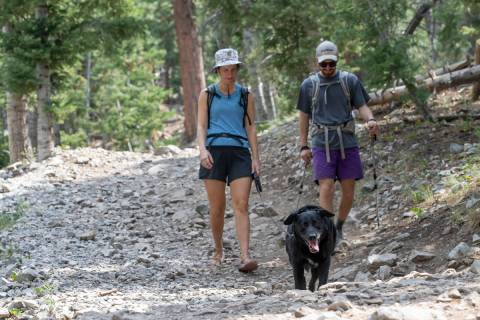 One place to try and beat the heat of 2020 was Mount Charleston. Mary Felker and Herb Page fini ...
