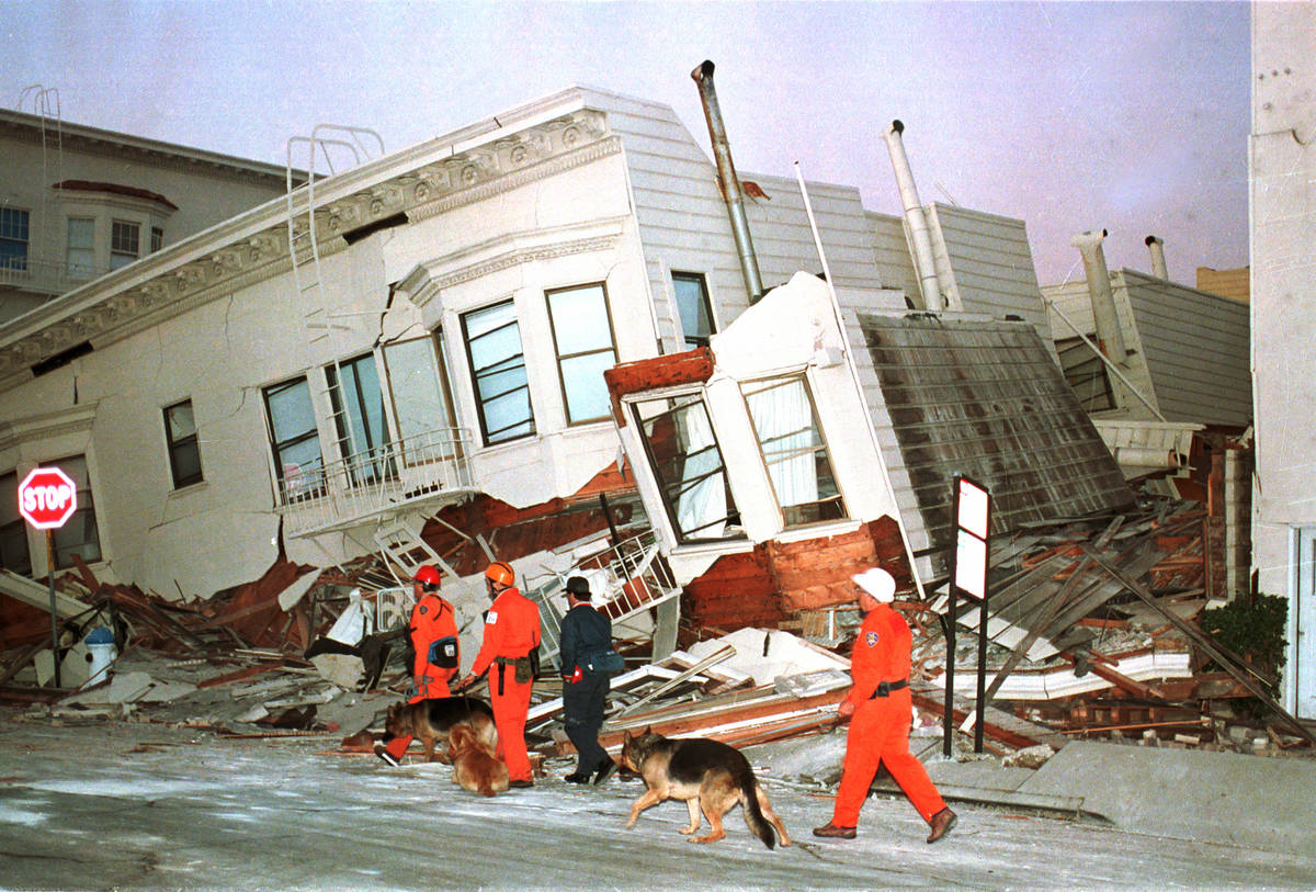 Rescue dogs are brought into position to begin searches of destroyed houses in the Marine Distr ...
