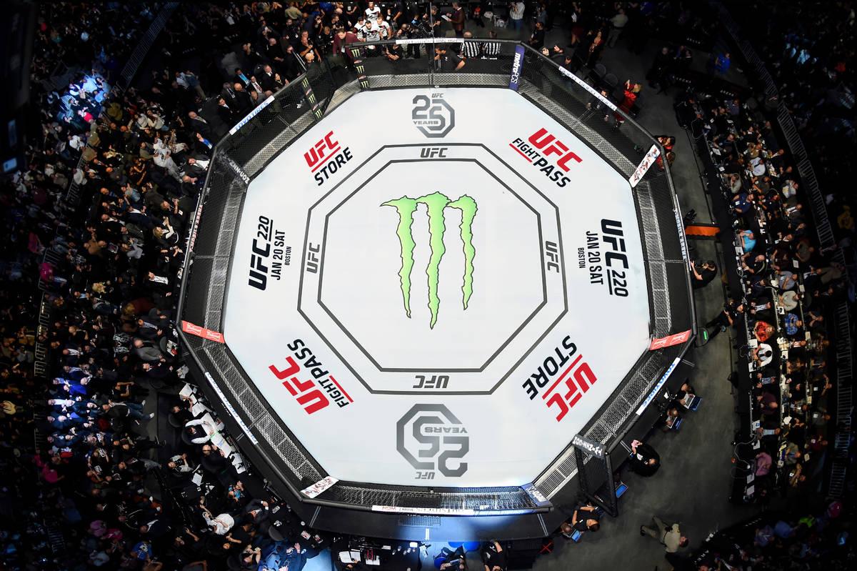 Photo courtesy of the UFC.