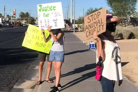 Protesters gathered in front of North Las Vegas City Hall in early September 2020 to ask for fe ...