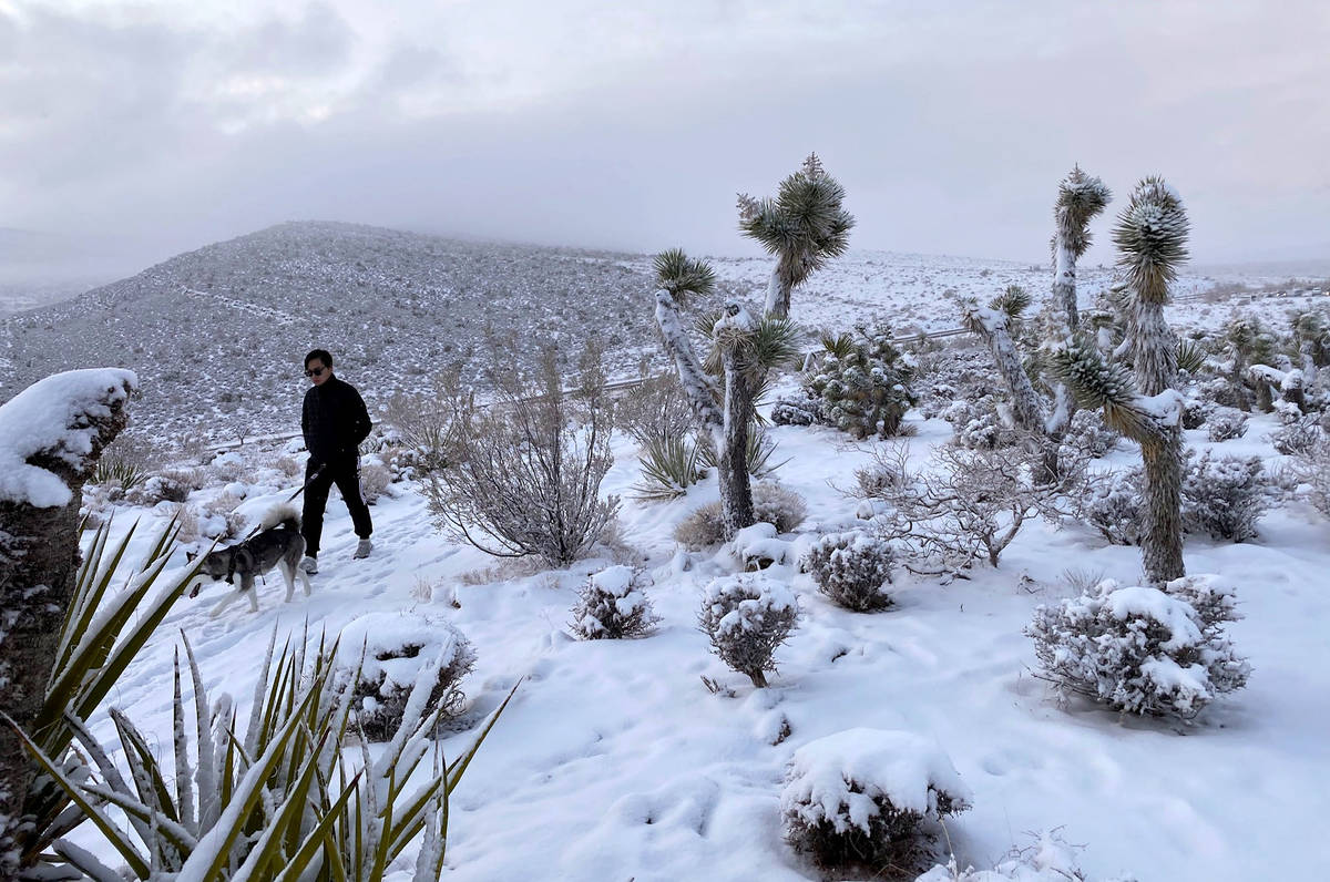 A visitor walks along a snowy path atop the lookout at Red Rock Conservation Area, Tuesday, Jan ...