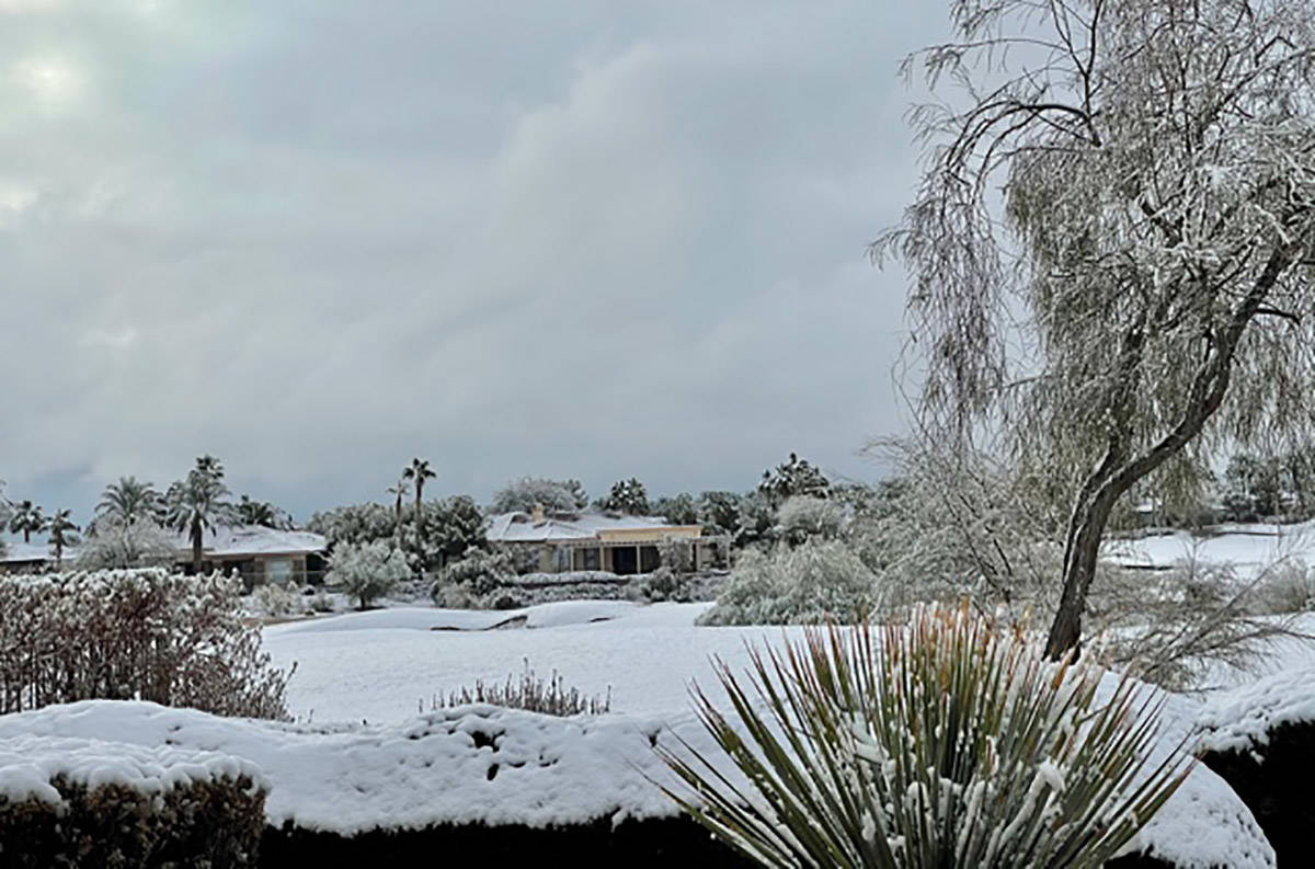 Snow covers the foliage at the Siena subdivision in Summerlin on Tuesday, Jan. 26, 2021. (John ...
