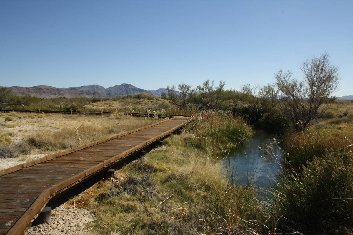 The boardwalk along the Crystal Spring Trail keeps visitors off the wetlands. (Deborah Wall)