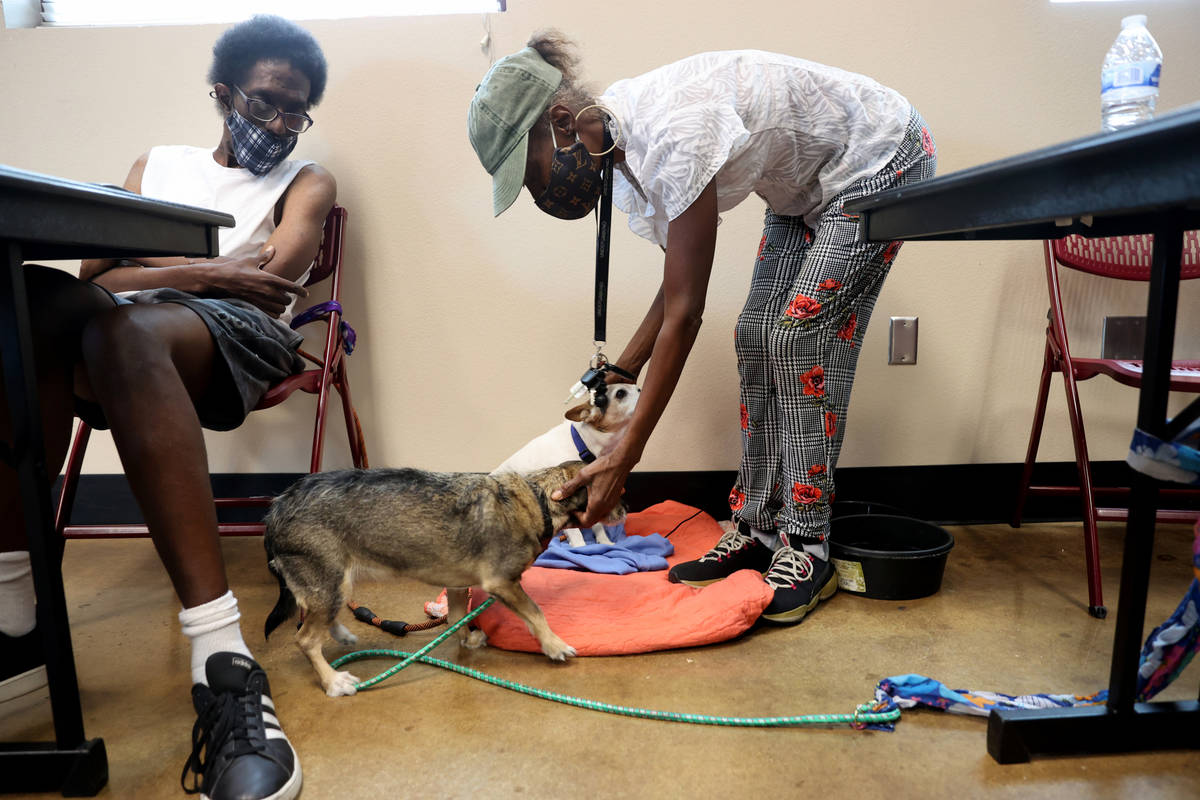 Marie Smith, 62, checks on her dogs Clyde, rear, and Keekee as her son, Michael Lawrence, 43, l ...