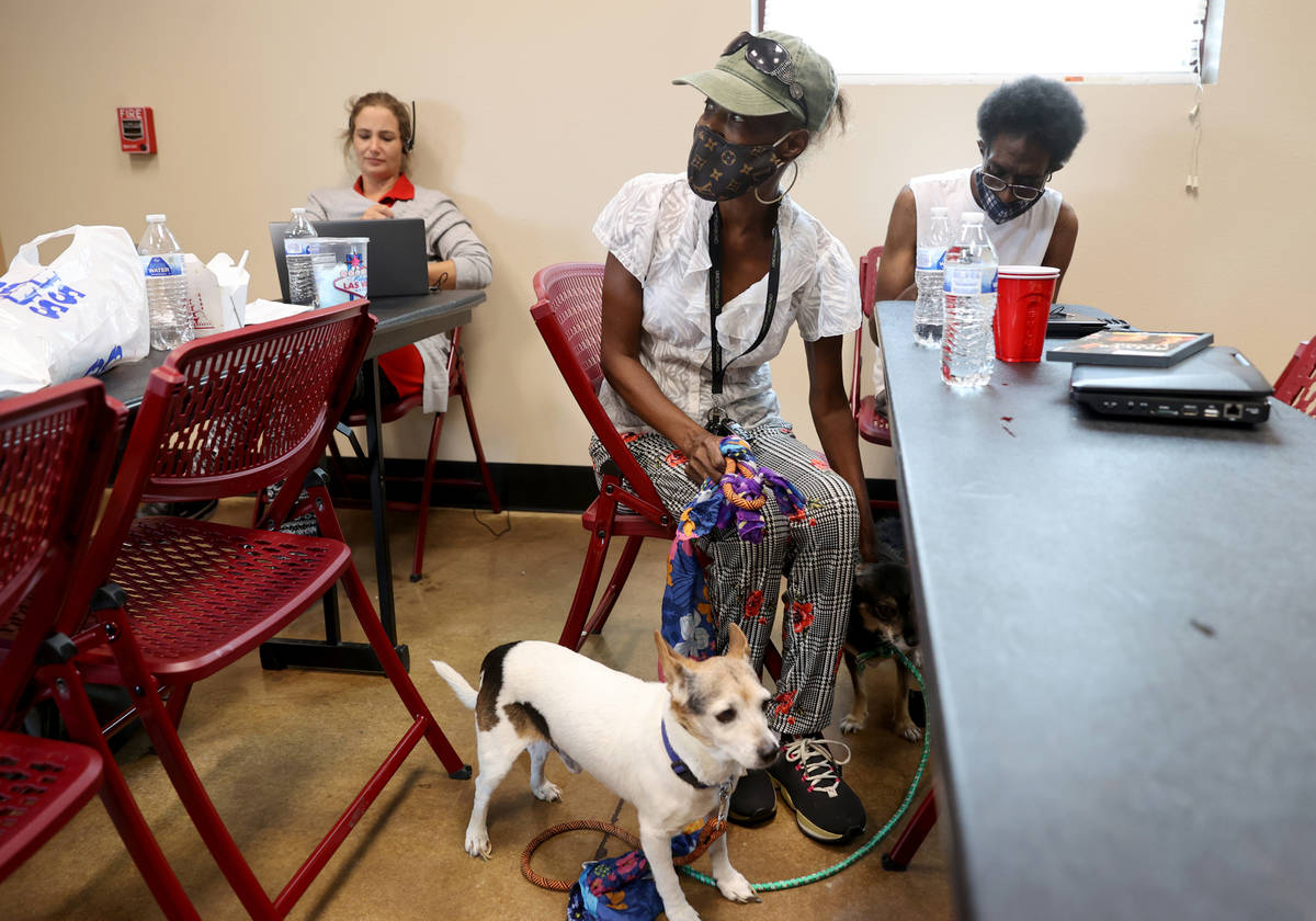 Marie Smith, 62, checks on her dogs Clyde, left, and Keekee in the cooling station at Cambridge ...