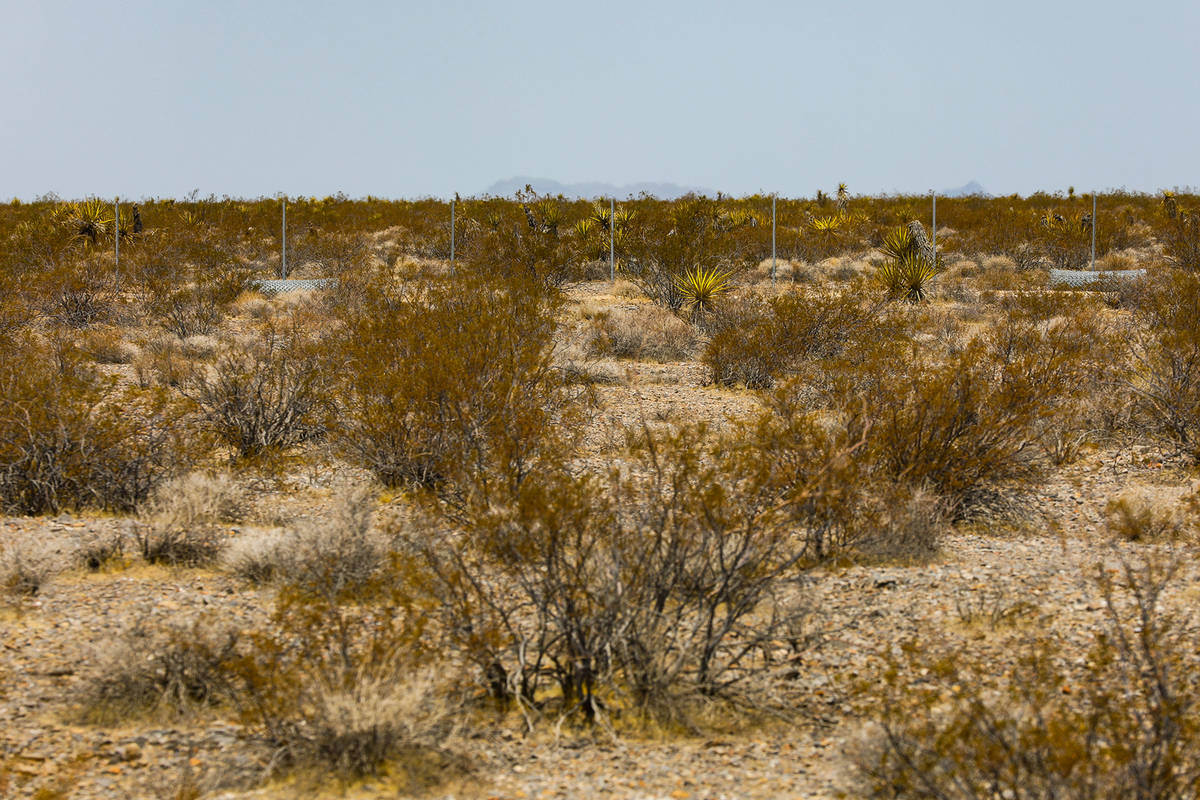 The fence of the future Yellow Pine solar project that will cover a 3,000-acre swath of desert, ...