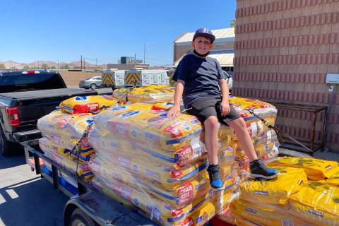Roman Pandullo collected 4,300 pounds of dog food to donate to the Henderson Animal Shelter. Ca ...