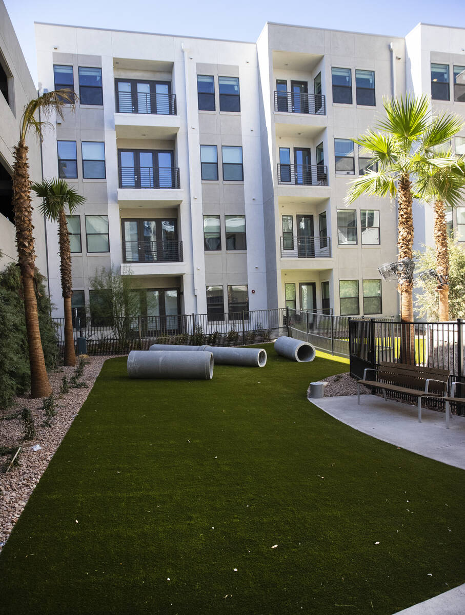 Dog park is seen at Auric Symphony Park, the first luxury multifamily residential community at ...