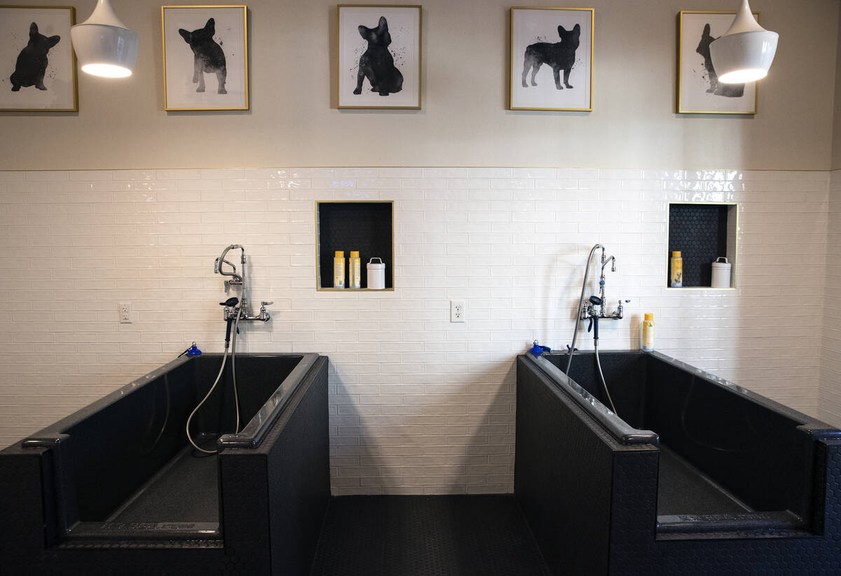Pet wash area is seen at Auric Symphony Park, the first luxury multifamily residential communit ...